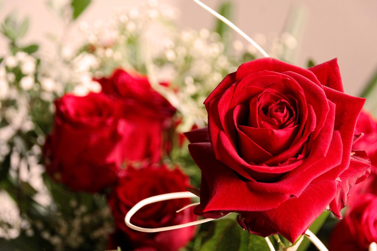 Valentinstag 14 Februar Der Tag Fur Verliebte