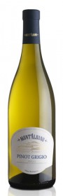 2019 Pinot Grigio Vino Biologico