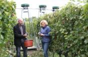 Auswirkung von erhöhtem CO2-Gehalt der Luft auf den Weinbau - Ministerin Julia Klöckner macht sich ein Bild anhand der Versuchsanlage in Geisenheim. Links: Prof. Manfred Stoll, Hauptbetreuer des Projekts, im Hintergrund die CO2-Gebläse