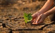 Zweiter Fortschrittsbericht der Deutschen Anpassungsstrategie an den Klimawandel