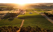 Byrne Vineyard: Reben im Clare Valley in South Australia
