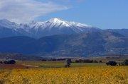 Roussillon-Landschaft