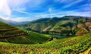 Wo Wasser und Wein fließen