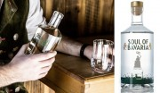 Gewinnspiel: 3 x 1 Flasche Gin von Münchner Spirituosen_BEENDET