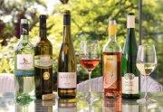 Gut passende Sommerweine