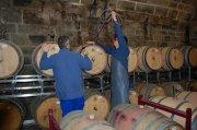Sehr trockene, ehrliche Rotweine - zum Essen genießen Weingut der Stadt Stuttgart