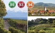 Beste Weine vom Bodensee, vom Kaiserstuhl, aus der Pfalz aus der bonvinitas Weinbewertung vom 29. August 2019