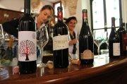 """Bei der Verkostung """"Anteprima Montepulciano d'Abruzzo"""" Anfang Juni in Ortona präsentierten mehr als 30 Winzer der Abruzzen ihre aktuellen Weine."""