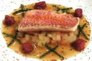 Rotbarbe-Tomaten-Escabeche mit Fenchelragout
