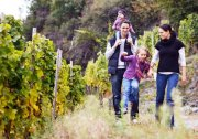 Bundesweites Wein-Wander-Wochenende 2016
