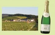 Kloster Eberbach bringt ausgezeichneten Sparkling Riesling alkoholfrei. Links: Steinberg mit dem Steinbergkeller der Domänen Kloster Eberbach Hessische Staatsweingüter