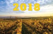 Der Wein-Jahrgang 2018 in Deutschland sehr klare Weine, beispielloser überdurchschnittlicher Jahrgang - bonvinitas Winzerbefragung