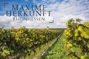 Neues Qualitätsmanagement: MAXIME HERKUNFT RHEINHESSEN