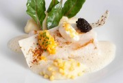 St. Petersfisch mit Kartoffel-Räucherfisch-Püree und Eigelbkaviar