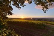 Sonnenuntergang über Rheinhessen. Foto: Rheinhessen Touristik, Achim Meurer