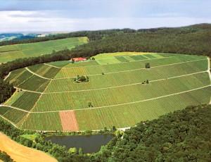 Das Weingut Amalienhof hoch auf dem Steinberg bei Beilstein/Württemberg