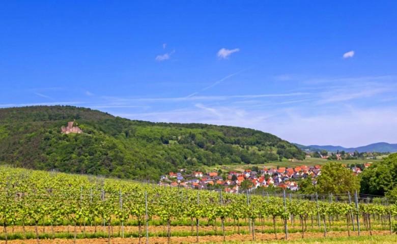 Blick auf Klingenmünster mit der Burg Landeck