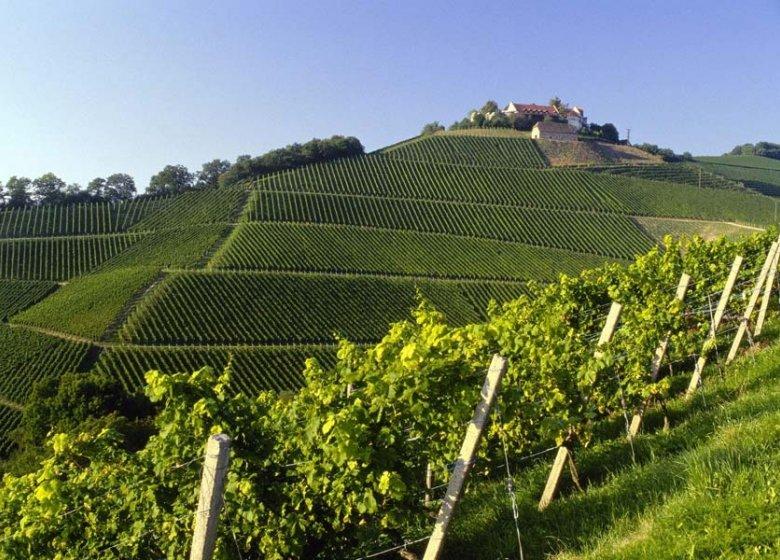 Schloss Staufenberg der Markgrafen von Baden