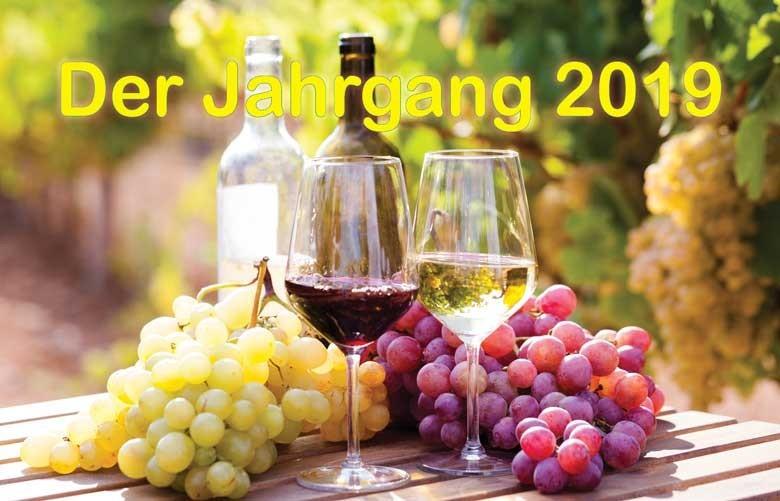 Der Jahrgang 2019: extraktreiche Weine mit sehr harmonischer Säure - geringerer Ertrag, doch Winzer mit guten Qualitäten entschädigt und sehr zufrieden