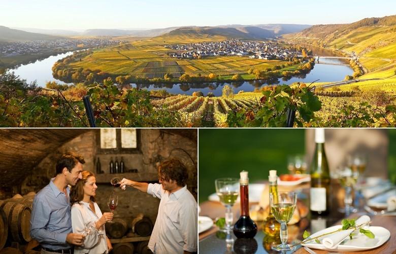 5,5 Mrd. Euro durch Weintourismus in deutschen Weinbaugebieten: 50 Mio. Touristen - neben Natur und Erholung Wein und Genießen Hauptreiseanlass