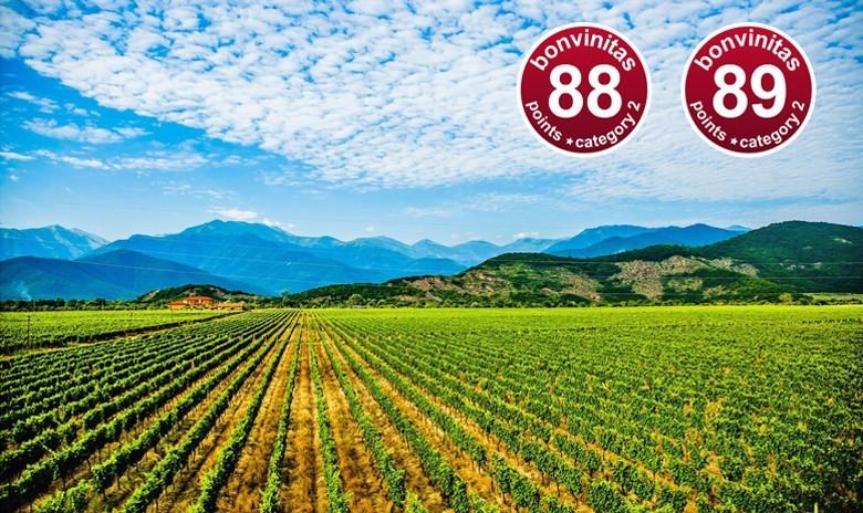 Weinbewertung 29.8.2019: zwei sehr gute rote Saperavi aus Georgien - aus der Provinz Kachetien von Chelti Estate ausgebaut in Qvevri – und mehr über Georgien