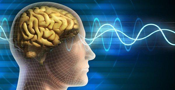 Schützt moderater Weingenuss vor Demenz und Alzheimer?