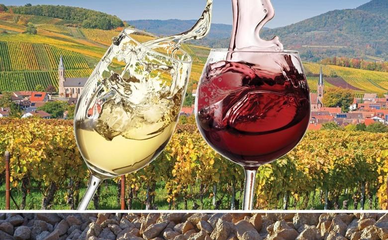 Das neue deutsche Weinrecht - was bringt es für Weinfreunde und Winzer? Nennung von Ort und Lage verlangen nun höhere Qualität, jetzt auch genau geregelt: Erstes und Großes Gewächs