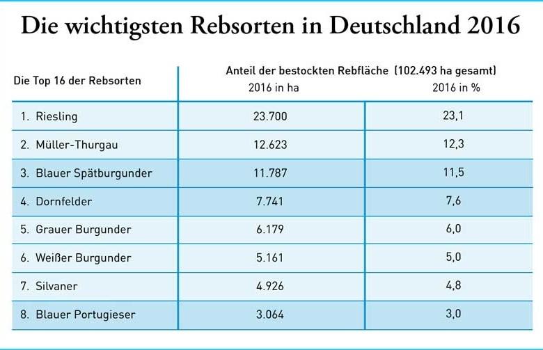 Deutsche Winzer setzen auf weiße Burgundersorten