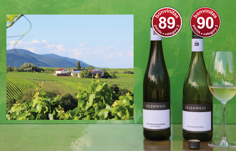 Das aufstrebende Weingut Erlenwein, wo die gut ausgebildete junge Generation für beste Qualitäten sorgt.