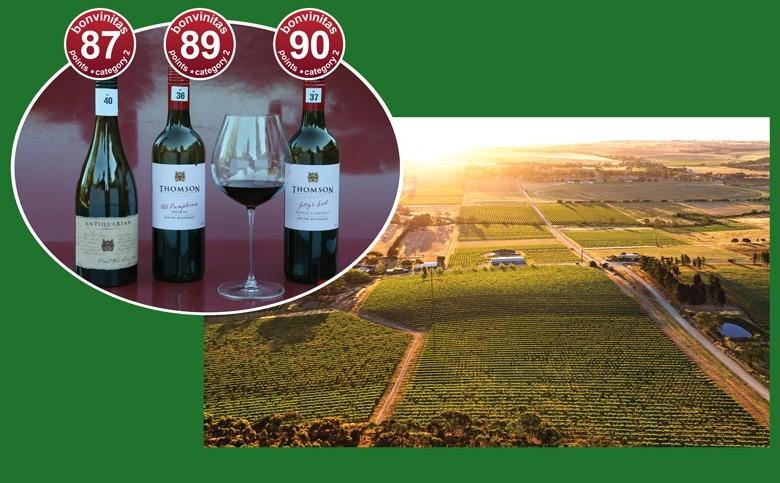 beste Rotweine aus Südaustralien der bonvinitas Weinbewertung am 14.8.2020 - von Byrne Vineyards in Norwood / Adelaide. Landschaftsfoto: Reben im Clare Valley