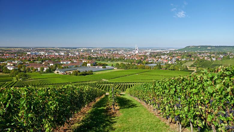 Die fröhliche Weinstadt Heilbronn - Groß- und Unistadt mit gleichzeitig viel Weintradition und Weinfesten. Foto: Manuel Schönfeld - stock.adobe.com