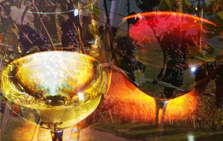 Mediterrane Ernährung, Wein und Krebsrisiko