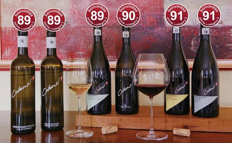 Super Weine – absolut individueller Stil – von bonvinitas top bewertet: Weingut Wien Cobenzl – der österreichischen Hauptstadt Wien – und äußerst geschichtsträchtig